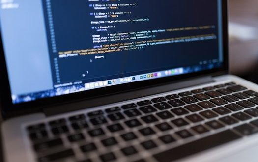 Web developer: offshore or intern