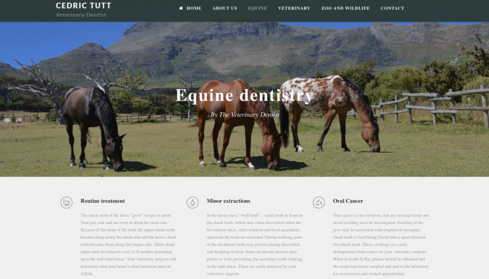 LastShore manages the Veterinary Dentist Website