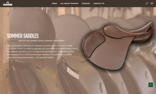 LastShore developed Sommer's website